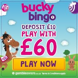 Bucky Bingo Promotion